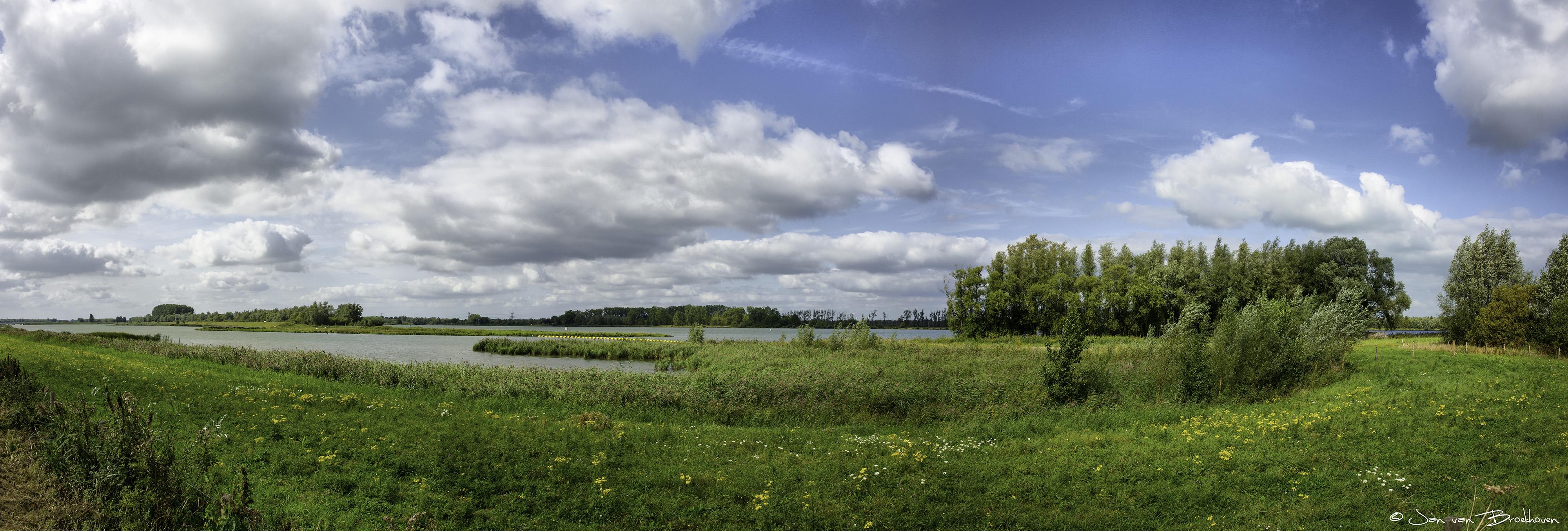 Panorama van de Biesbosch