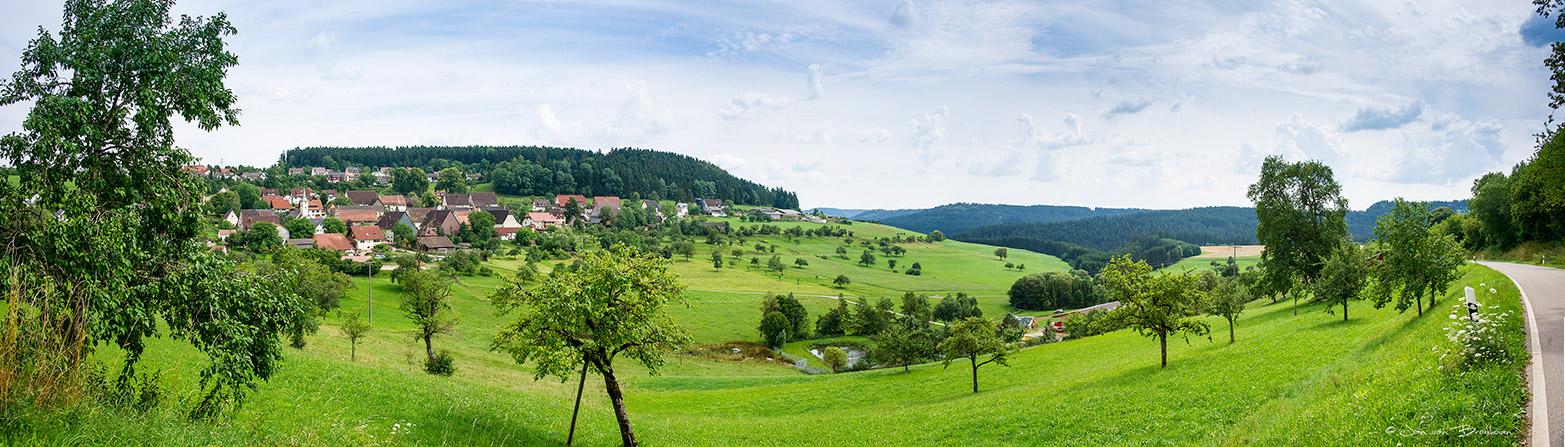 Panorama Duitsland Zwarte Woud