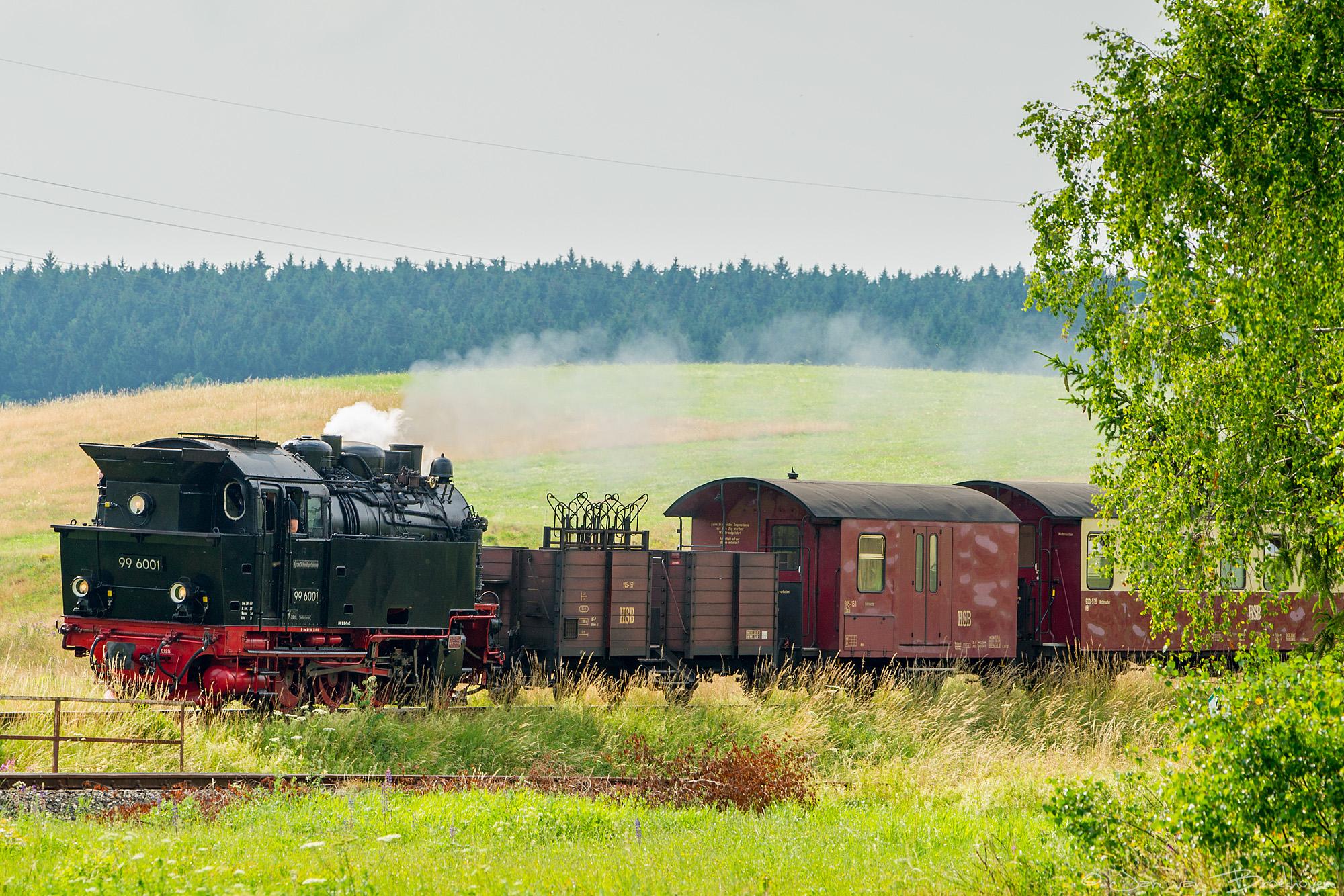 Harze Schmalspur Bahnen